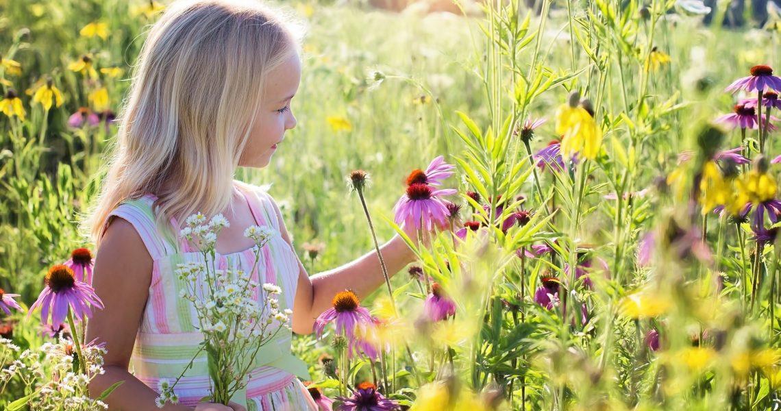 little-girl-2516578_1920